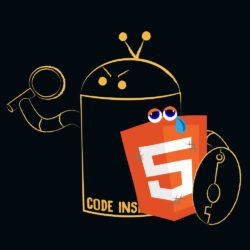 code inspector protects html5